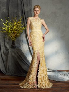 Mermaid Scoop Lace Sweep/Brush Train Mother of the Bride Dress